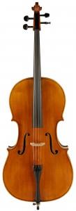 Samuel Shen Stradivari Willow Top